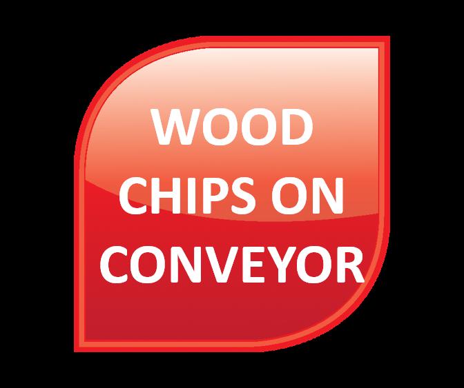 Wood - Wood Chips on Conveyor